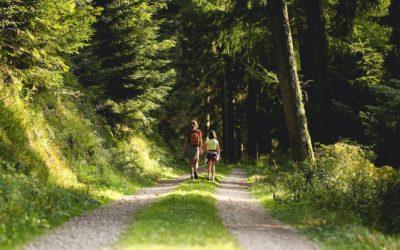 Kopf frei kriegen – so wirkt ein therapeutischer Spaziergang